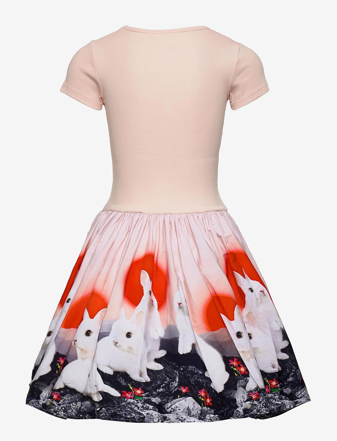 Molo - Cissa - robes - sunset bunnies - 1