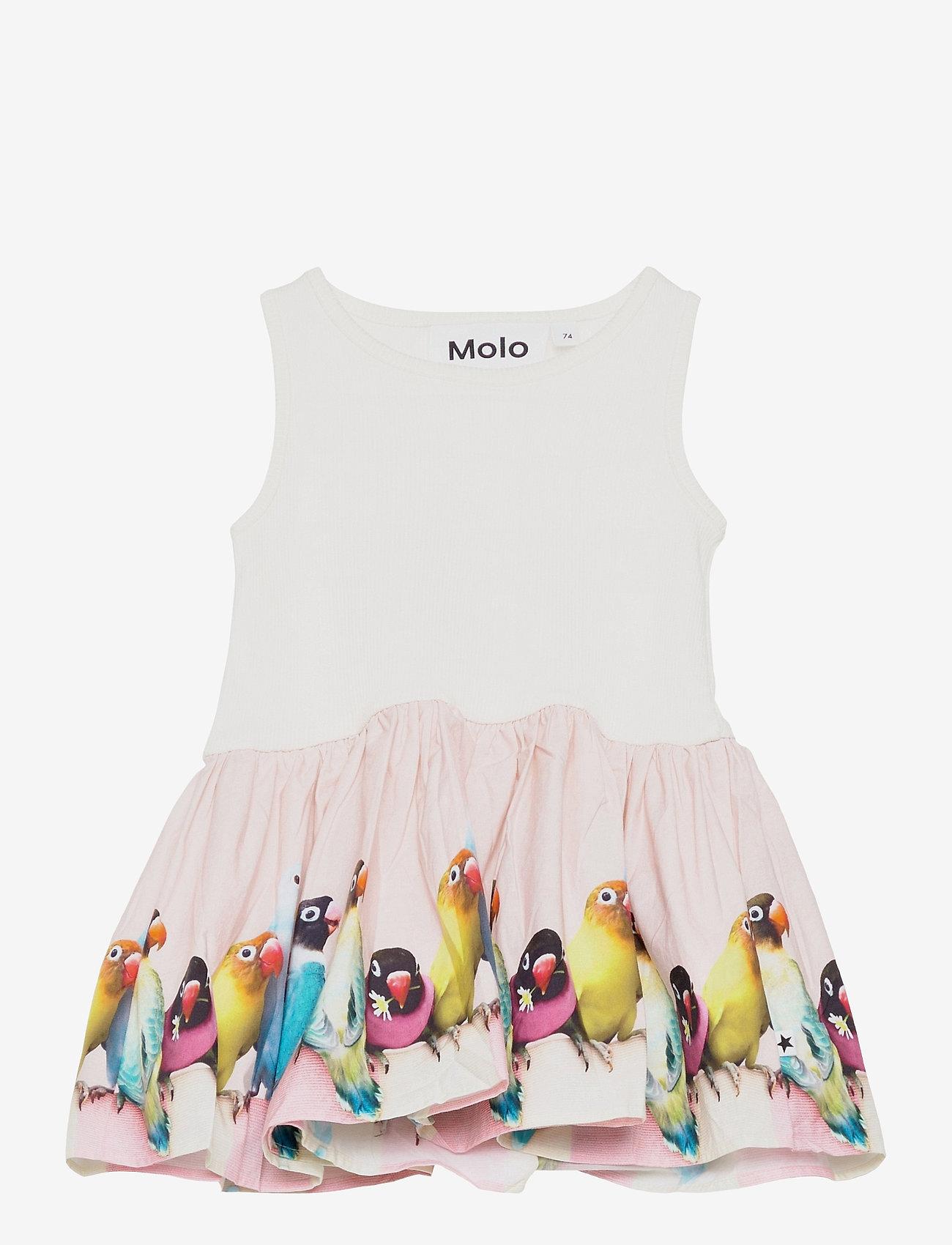 Molo - Cordelia - kleider - mini love birds - 0