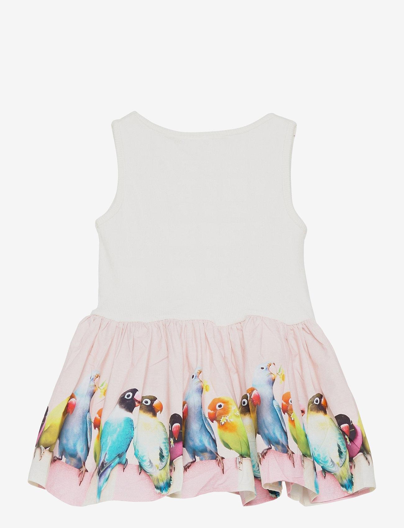 Molo - Cordelia - kleider - mini love birds - 1