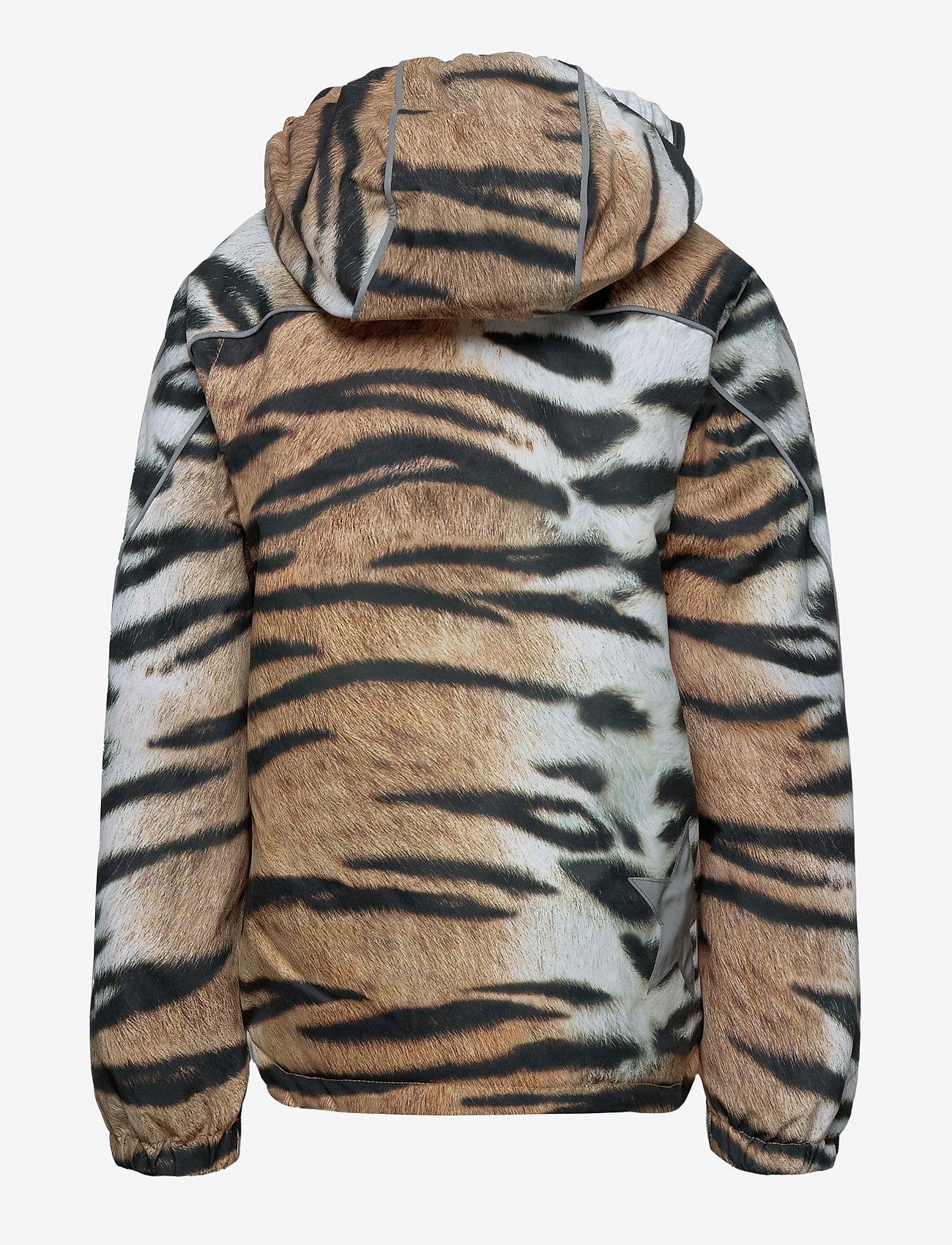Molo - Hopla - softshell jassen - wild tiger - 1