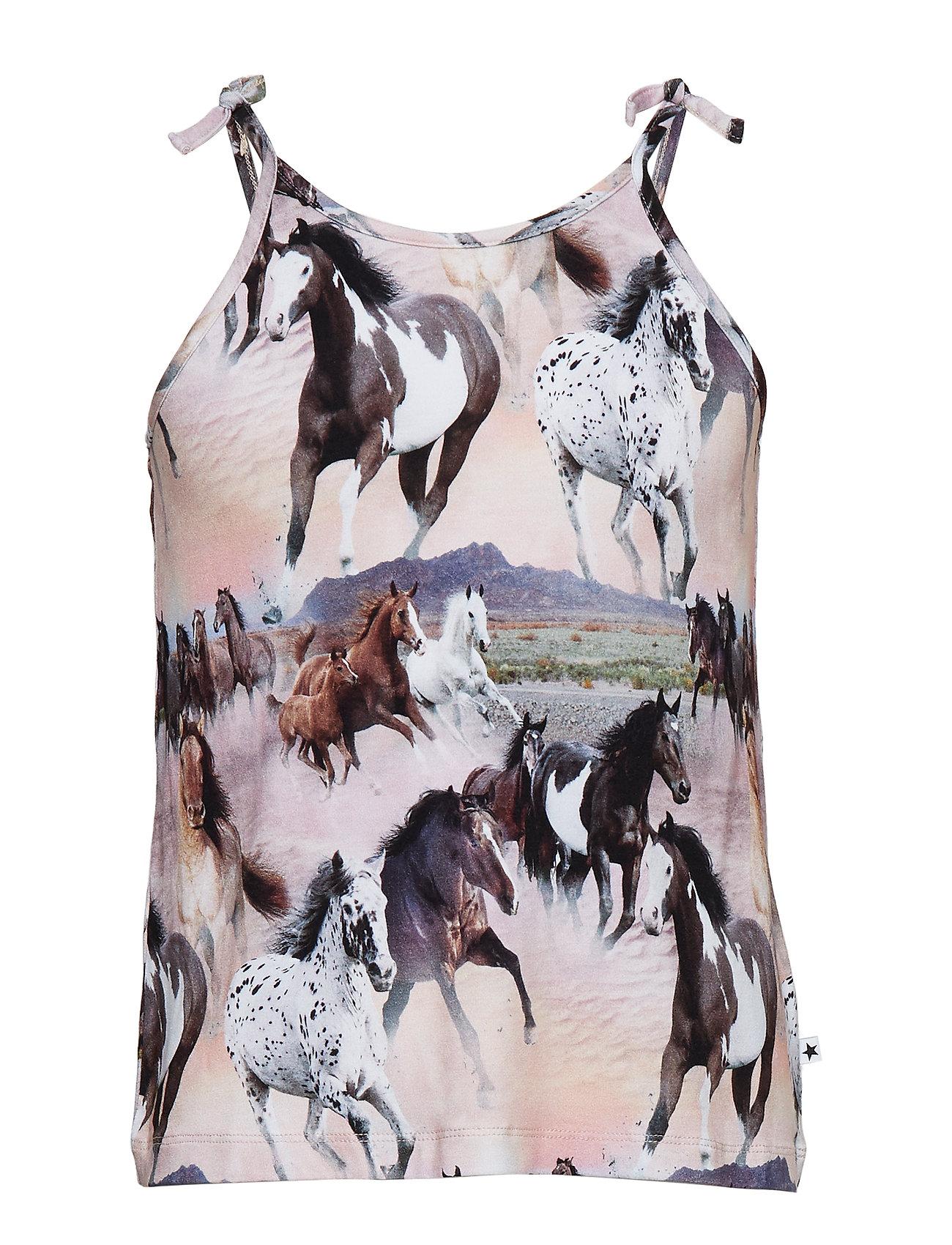 Molo Reba - WILD HORSES