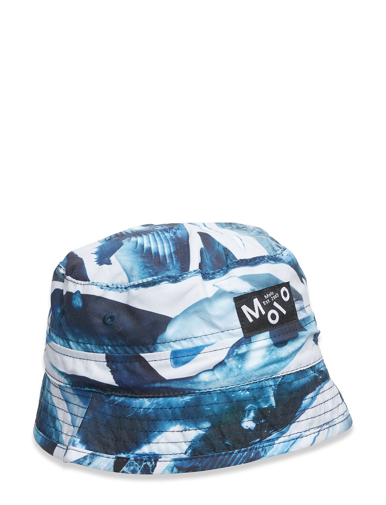 Molo Niks - WHALES