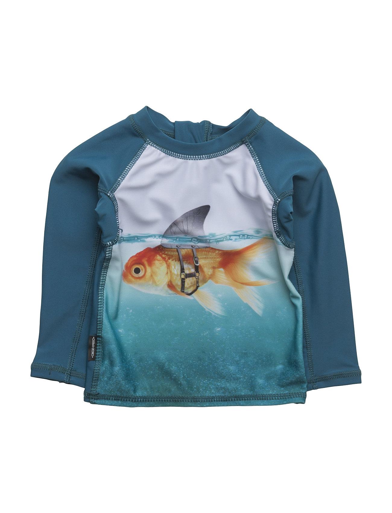 molo Nemo - SCARY FISH