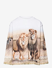 Molo - Mountoo - sweatshirts & hoodies - savanna - 0