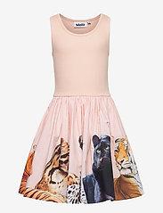 Molo - Cassandra - kjoler - big cats - 0