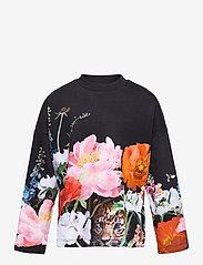 Molo - Marin - sweatshirts - garden games - 0