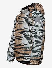 Molo - Hopla - softshell jassen - wild tiger - 2