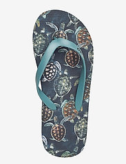 Molo - Zeppo - klipklapper & badesko - sea turtles - 3