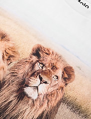 Molo - Road - kortærmede - 3 lions - 2