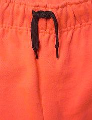 Molo - Adian - shorts - neon coral - 3