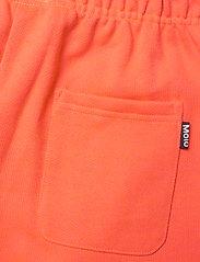 Molo - Adian - shorts - neon coral - 4