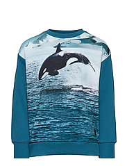 Madsim - JUMPING ORCA