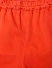Molo - Acacia - shorts - poppy - 2