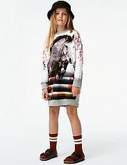 Molo - Carita - robes - jumping horse - 0