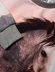 Molo - Carita - robes - jumping horse - 3
