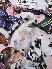 Molo - Eva - langärmelig - puppy love - 2