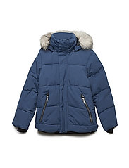 Herbert - BLUE WING TEAL