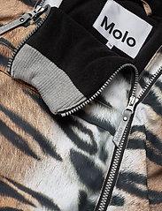 Molo - Hopla - softshell jassen - wild tiger - 5