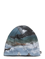 Ned - ARCTIC LANDSCAPE