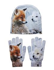 Kaya - FOXES