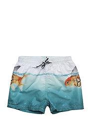 Niko - SCARY FISH