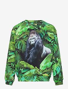 Miksi - sweatshirts - jungle gorilla
