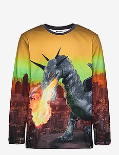 Ravenal - long-sleeved t-shirts - dragon