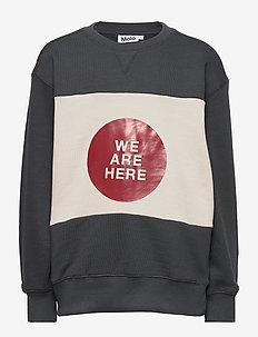 Mann - sweatshirts - night grey