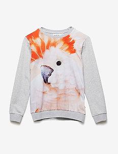 Regine - sweatshirts - cockatoo