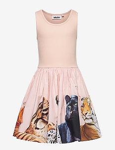 Cassandra - dresses - big cats