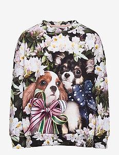 Maxi - sweatshirts - pretty puppies