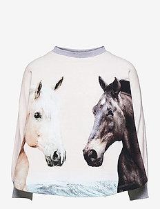 Marcella - sweatshirts - horse friends