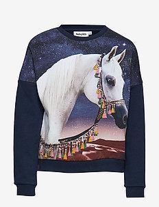 Marigold - ARABIAN HORSE