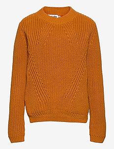 Gillis - jumpers - autumn