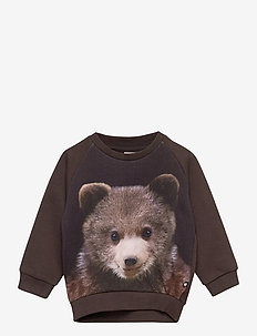 Disco - sweatshirts - bear cub