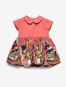 Cinna - dresses - baby papillon