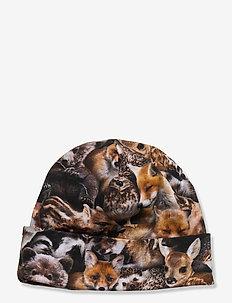 Nico - beanie - forest animals