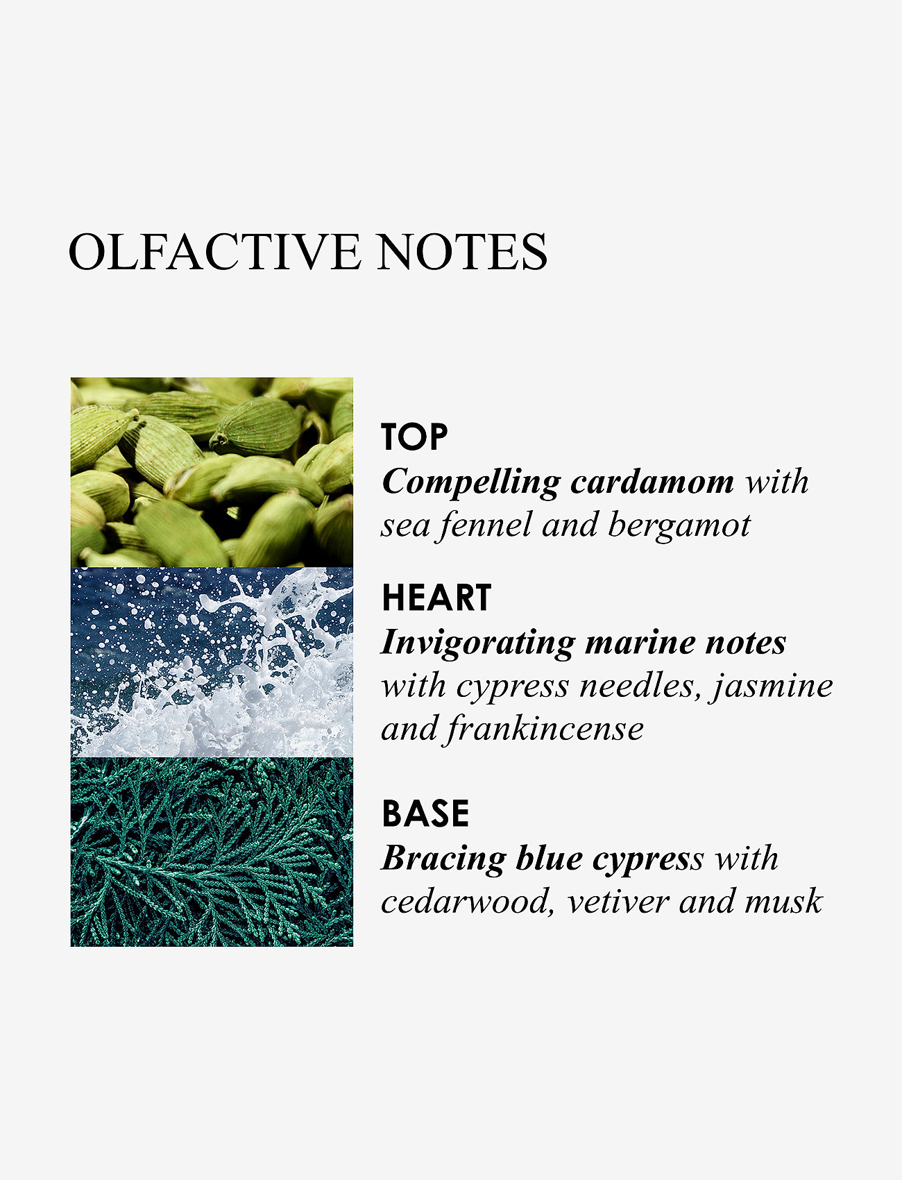 Molton Brown - COASTAL CYPRESS & SEA FENNEL FRAGRANCE COLLECTION - presentaskar - clear - 1
