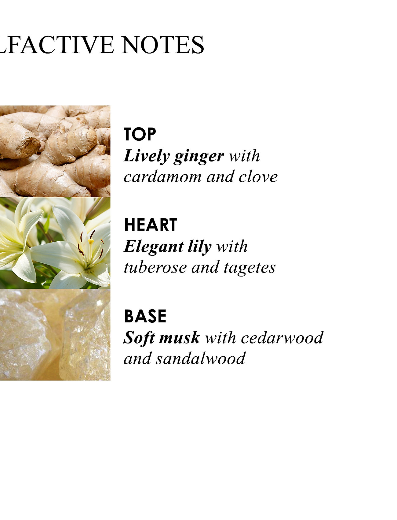 Molton Brown - Heavenly Gingerlily Fine Liquid Hand Wash - handtvål - no colour - 1