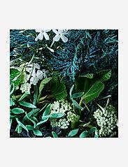 Molton Brown - Coastal Cypress & Sea Fennel Fine Liquid Hand Wash - handtvål - no colour - 4