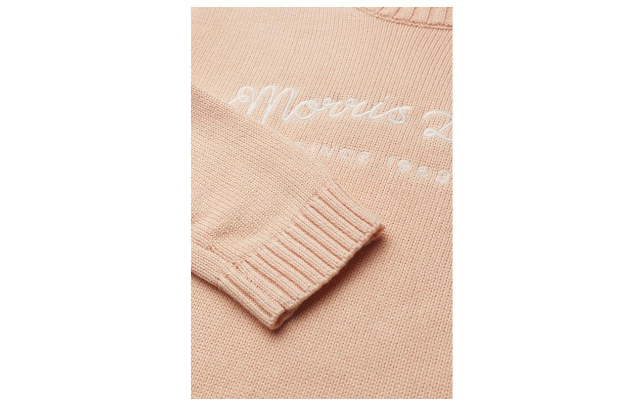 Morris Coton Orange Knit Lady 100 Équipement Kaley wx7vwrqAR