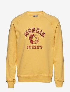 Tahaa Sweatshirt - sweatshirts - yellow