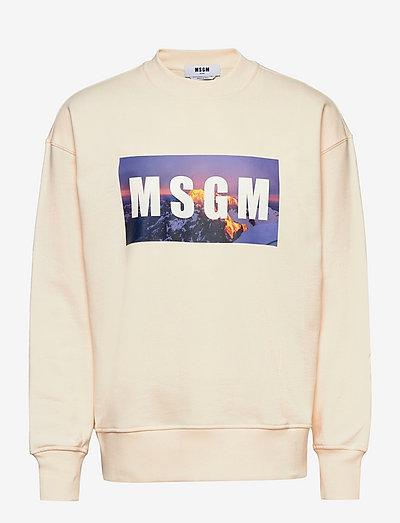 Sweatshirt - clothing - cream