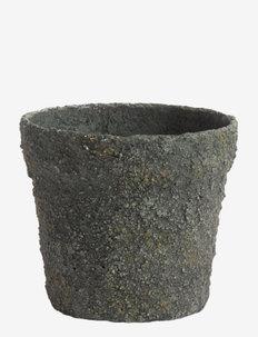 Jar Mosu 12 - ruukut - moss