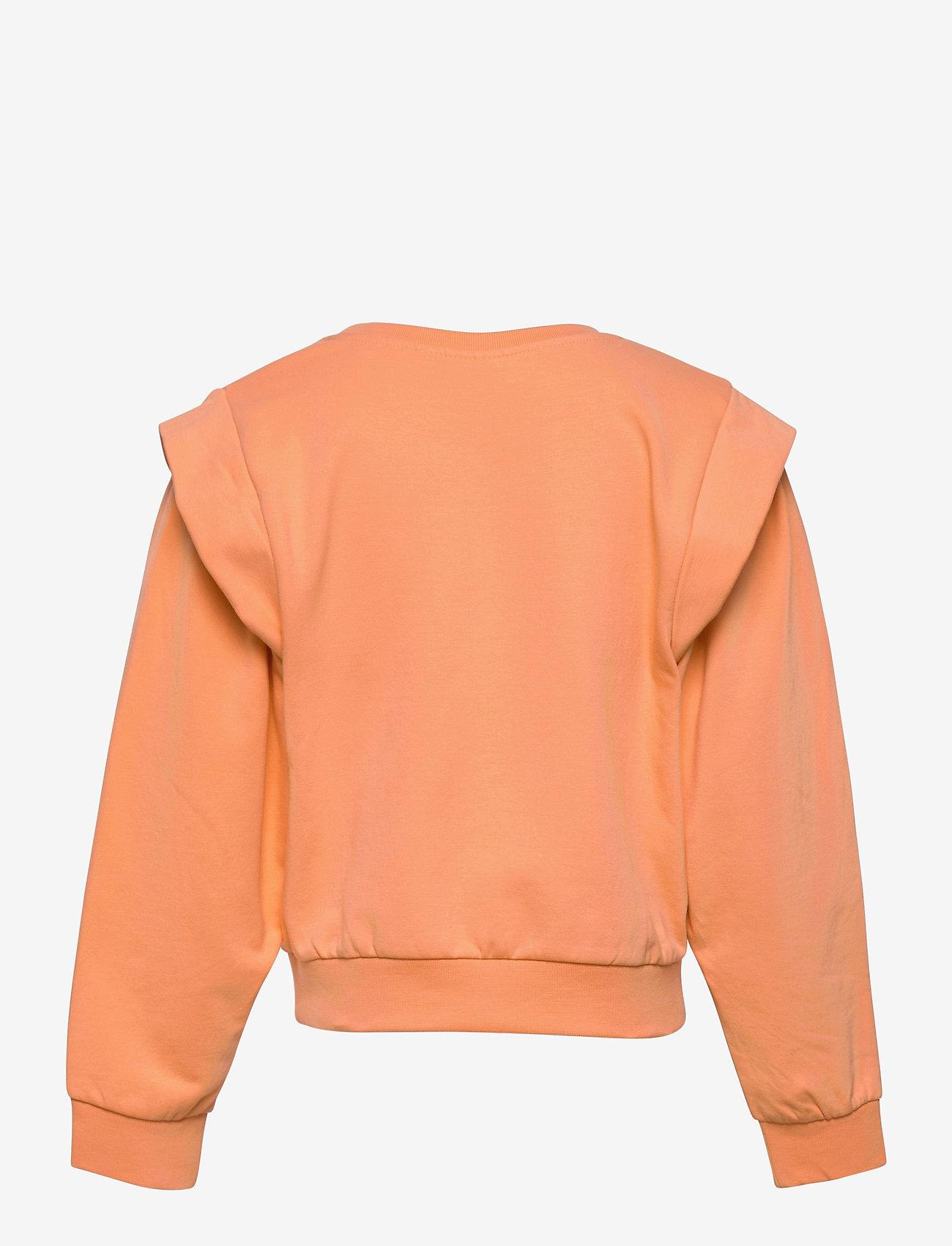 name it - NKFHOWAY LS SWEAT BRU - sweatshirts - cantaloupe - 1