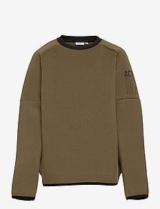 NKMLYDER LS SWEAT - sweatshirts - stone gray