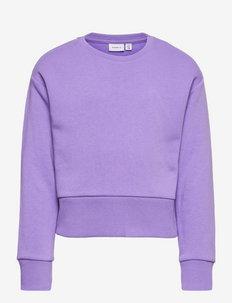 NKFNUKKA LS BOXY SHORT SWEAT BRU - sweatshirts - paisley purple