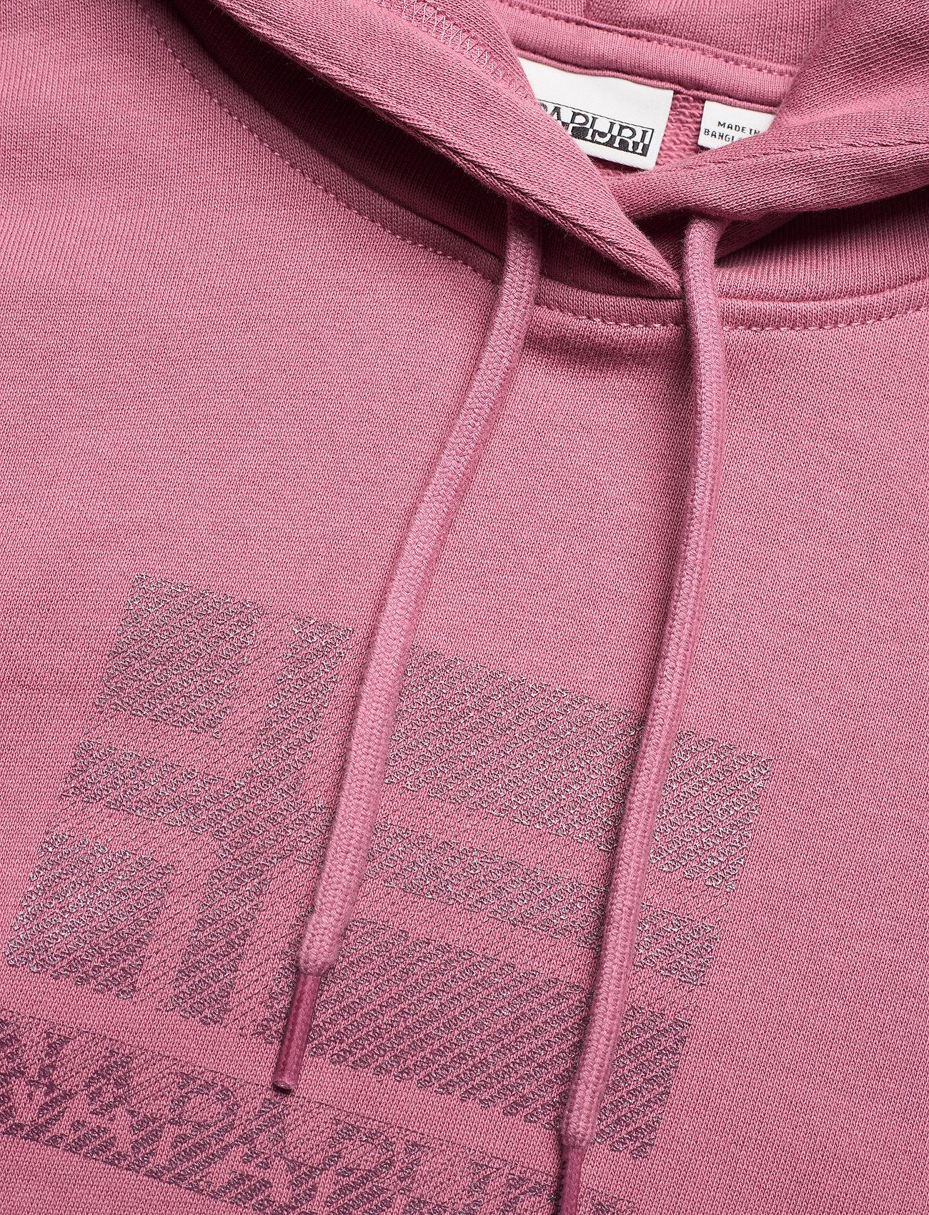 Napapijri - BEOL H - sweatshirts & hoodies - mesa rose - 2