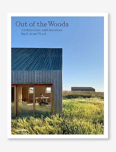 Out of the Woods - böcker - light blue/grey/green