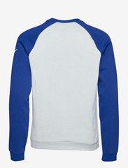 NIKE Fan Gear - Seattle Seahawks Nike Go Helmet Historic Raglan Sweatshirt - sweats - field silver / old royal - 1
